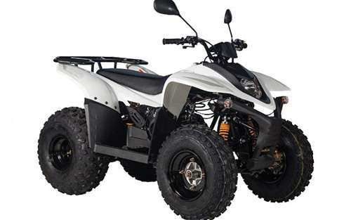 Stels ATV 100Rs.