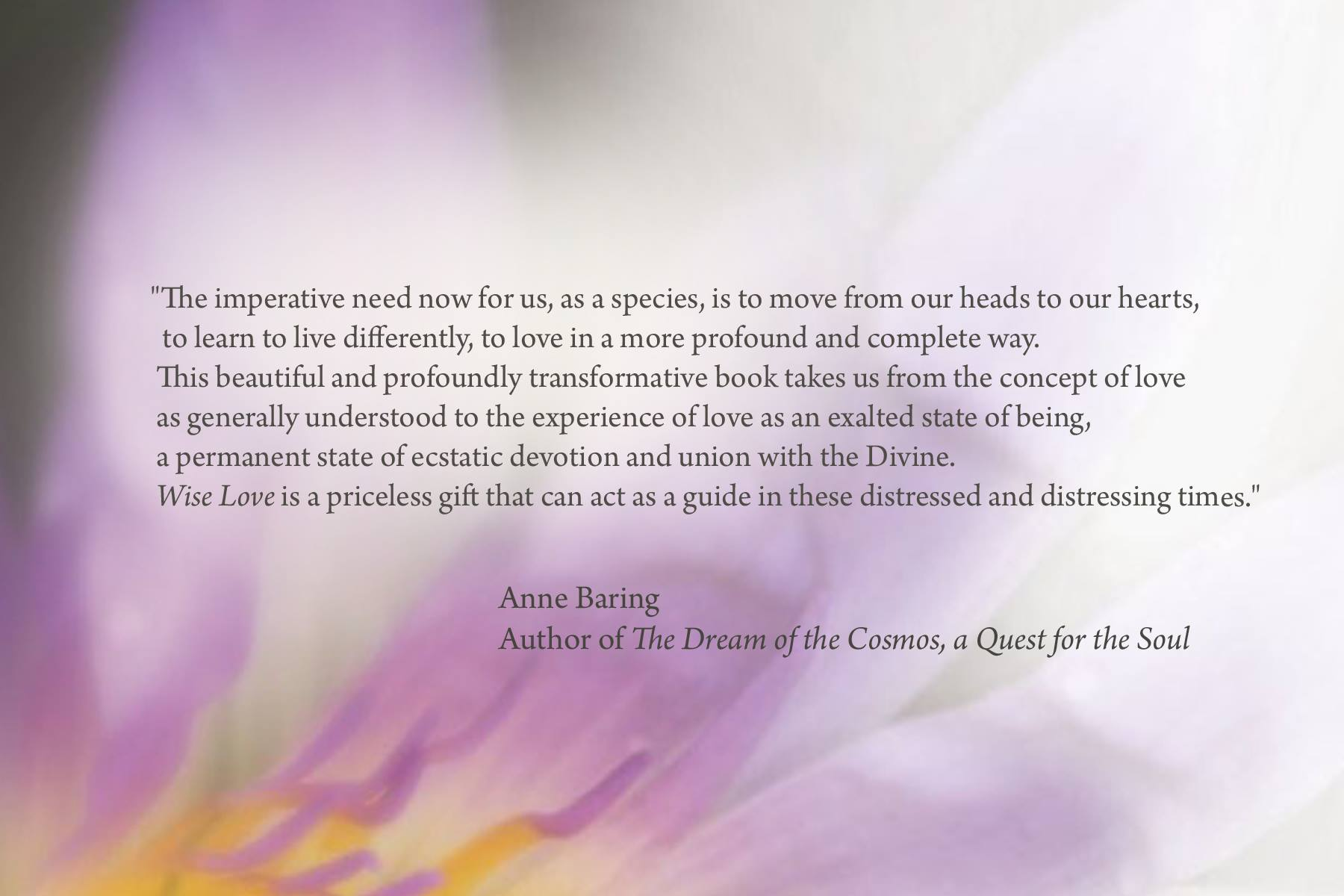 wise_love_endorsement_anne_baring