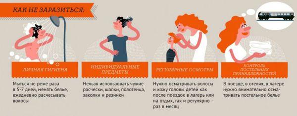 Prévention de la pédiculose