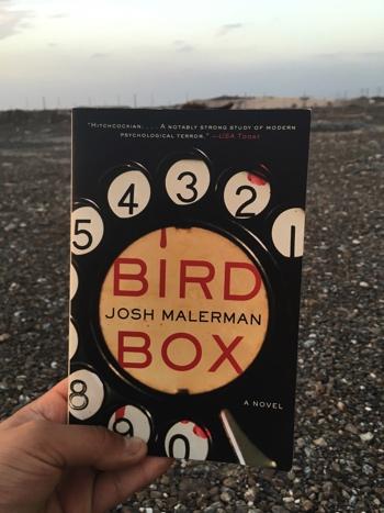 bird-box_