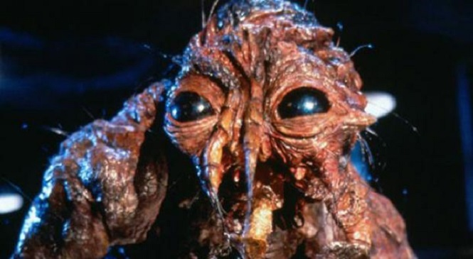 Fox In Talks To Re-Adapt THE FLY
