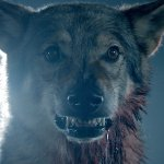 ZOMBPOCALYPSE NOW: The Wolves That Are Teens Return!
