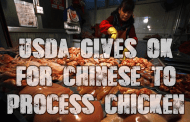 USDA OK sending American Chickens to China to be processed and returned for consumption