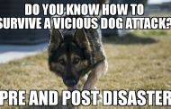 How to survive a vicious dog attack pre & post disaster.