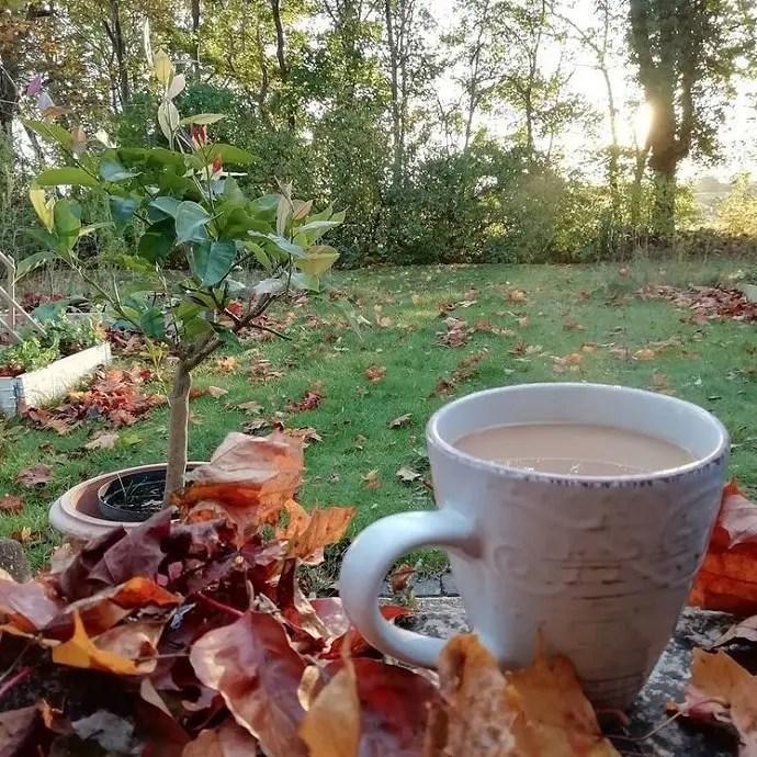 Svea y Pablo - Un cafe en el jardín