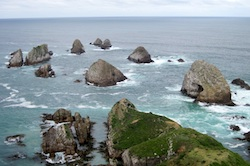 Nuggets of Nugget Point, New Zealand