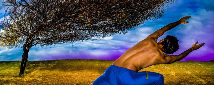 Diego da Silva Mimicry Man Tree Yoga Manipulation Techniques_edited
