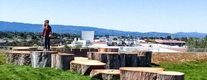 Evan Shivley Camp Out tree stumps on the roof of Building 20 is one of 15 art installations throughout the building