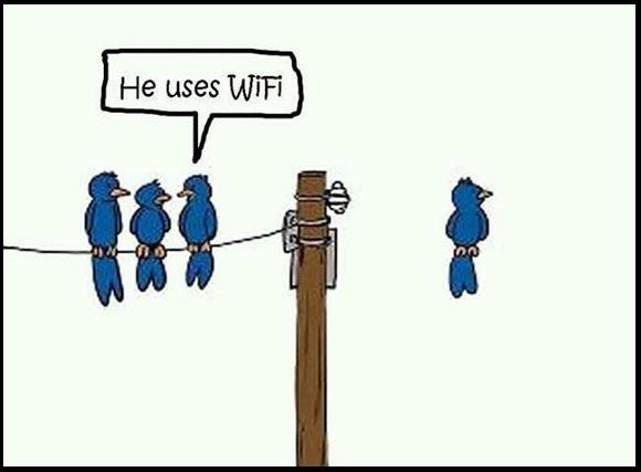 He-Uses-Wifi-Funny-Technology-Birds-Cartoon-techmasterblog