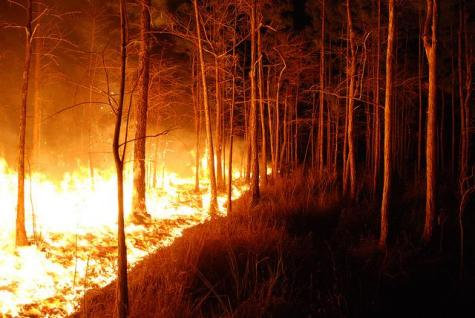 Wildfires cause a lingering smoke