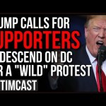 "Trump Calls On Supporters For ""Wild"" Protest Of Electoral Count In DC, Democrats Fear War Is Coming"
