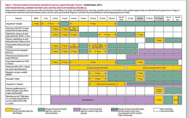 cdc immunization schedule