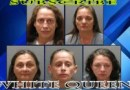 5 White Queens Arrested for Prostitution Sting, 1 Offered SEX for Taco Bell