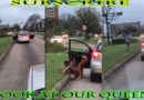 Black Queen Gets Put out Of Her Car In the Middle of Traffic