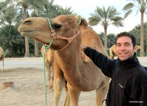 posing with a camel in Bahrain at the Royal Camel Farm