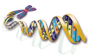 MTHFR: My Genetic Mutations, Folic Acid, and Medical