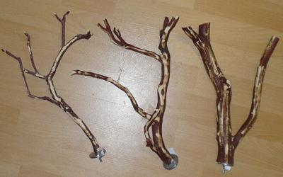 perchoirs en bois