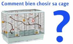 bien chosir sa cage