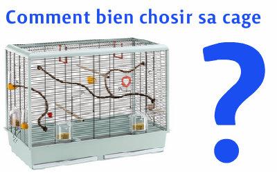 choisir sa cage