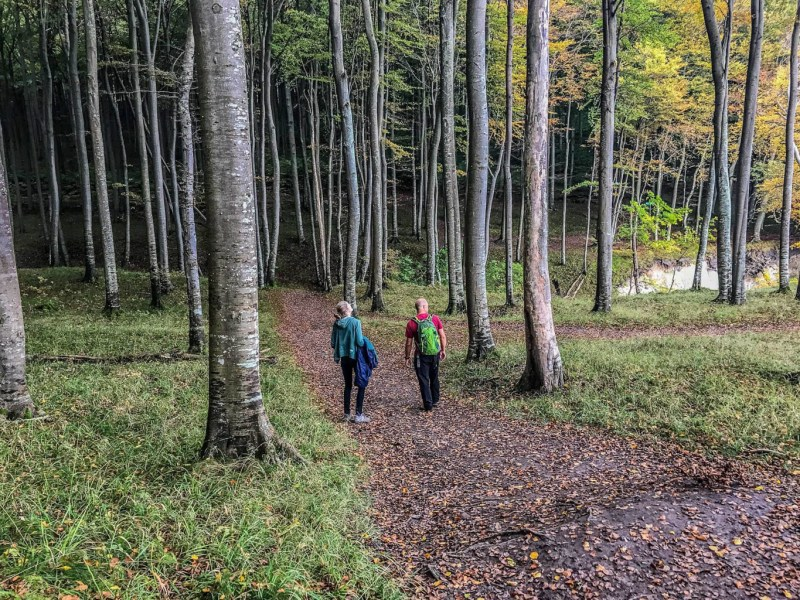 European Beech Forest Network Vilm 2017