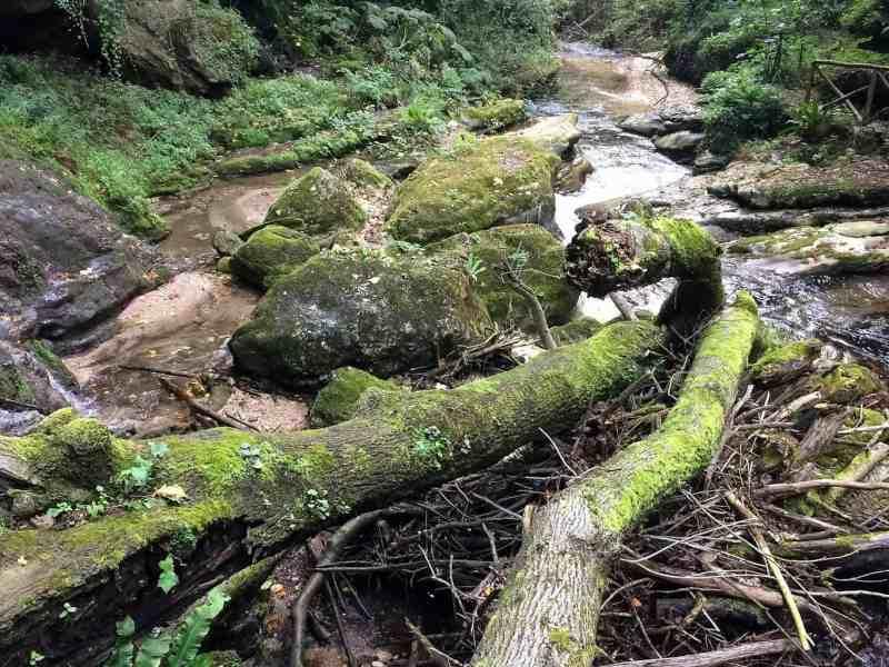 Majella Wilderness Audit 2018