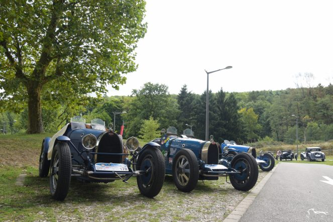 Type 51 & Type 37A Sport (body Grand Prix)
