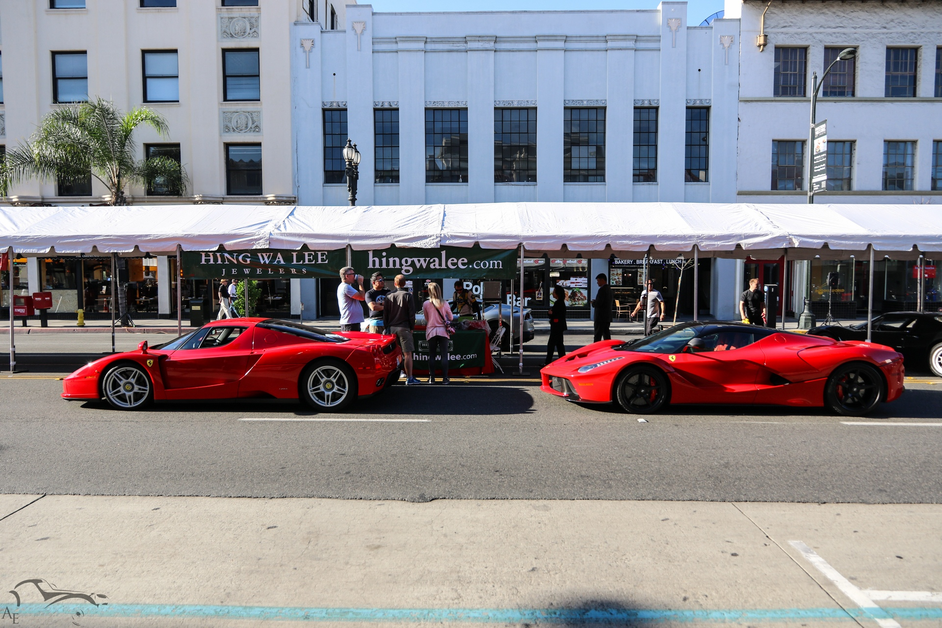 Ferrari Enzo and Laferrari