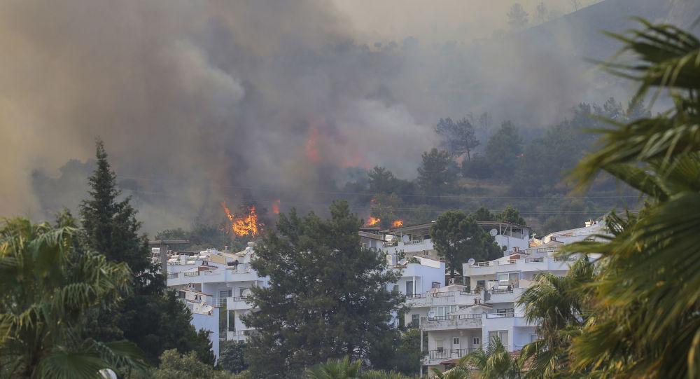 Волна тепла и сильные ветры подпитывают лесные пожары, которые бушуют в Турции уже седьмой день — фото, видео