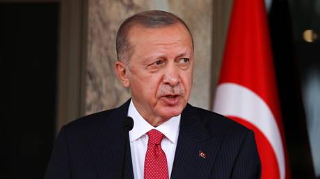 Эрдоган рассматривает возможность увольнения 10 западных послов из-за призывов освободить заключенного оппозиционного деятеля Кавалы