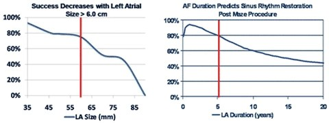 Left: Success Decreases with Left Atrial Size>6.0cm; Right: AF Duration Predicts Sinus Rhythm Restoration Post Maze Procedure