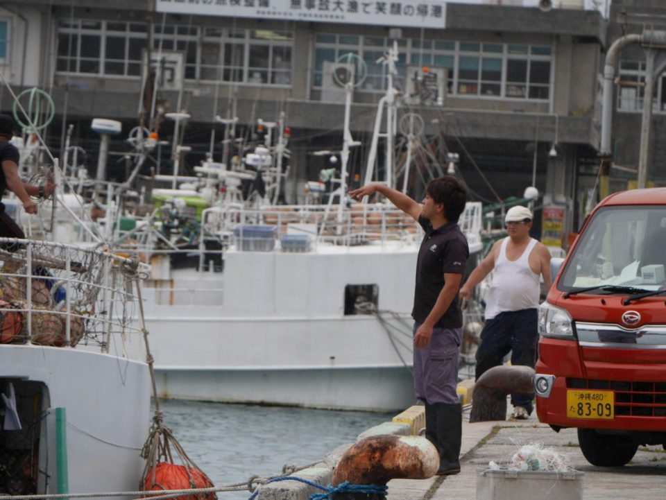Sur le port où nous avons trouvé Tito et Toti