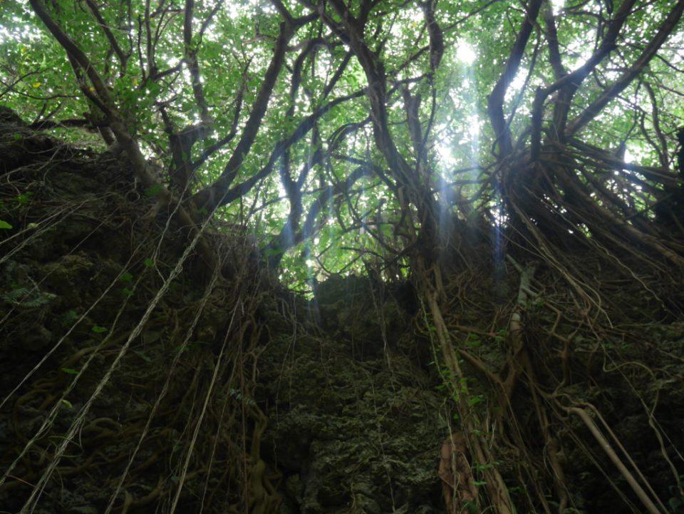 Grotte de Chibichiri