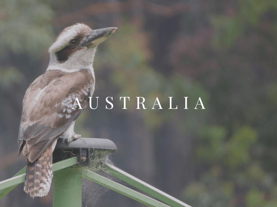 Australia AFQ