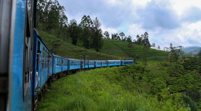 Train bleu sur un décor de verdure