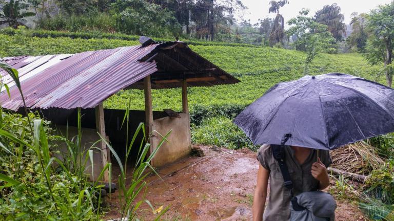 Retour sous la pluie © dMb 2020