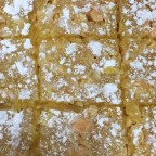 White Chocolate Lemon Bars