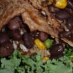Gracie's Amazing Vegetarian Burritos