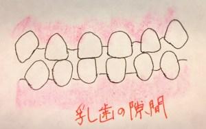 乳歯の隙間