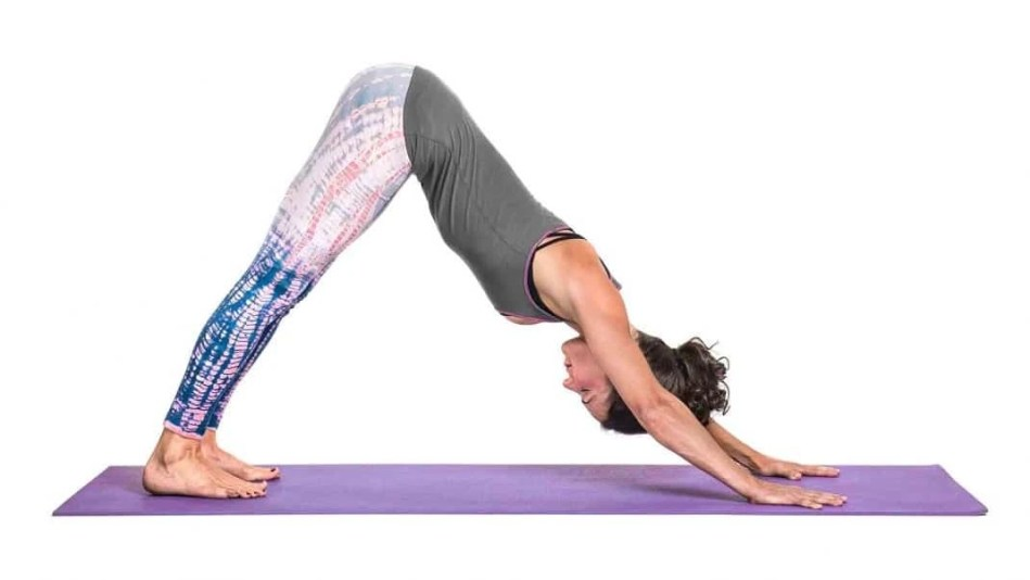 Downward Facing Dog - A-Lifestyle