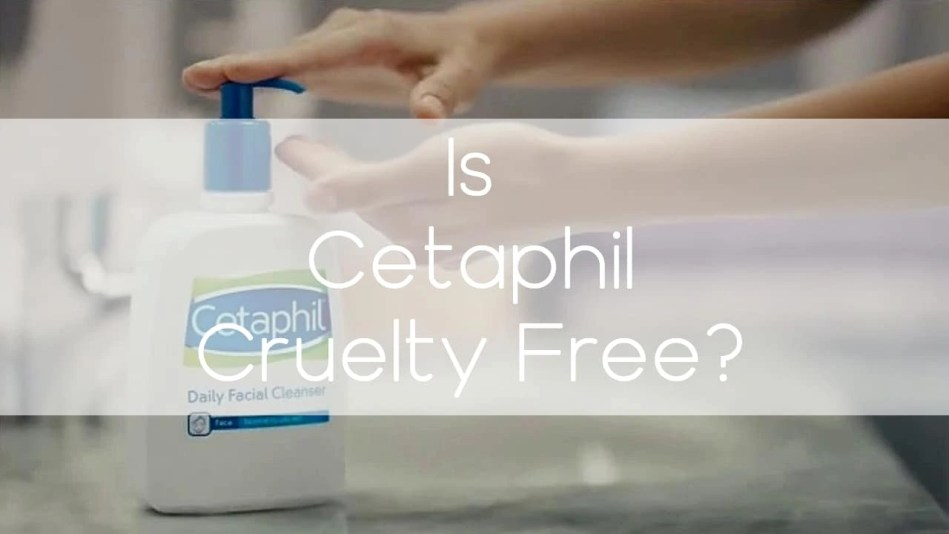 Is Cetaphil cruelty-free? - A-Lifestyle