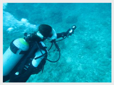 沖縄ダイビングライセンス|ナビゲーション風景