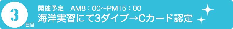 PADIダイビングライセンス取得 海洋実習でのダイビング練習 Cカード認定