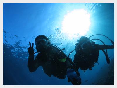 青の洞窟体験ダイビングスペシャルコース