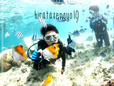 沖縄体験ダイビング|10歳からOK