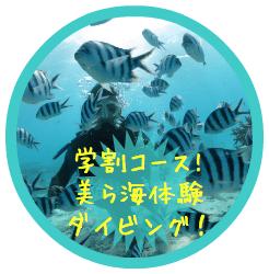 沖縄学割卒業旅行にオススメのツアー★体験ダイビングはこちら