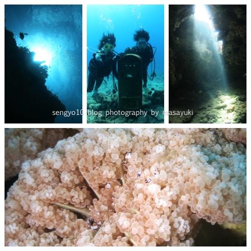 沖縄ダイビング|砂辺で初心者FUN3