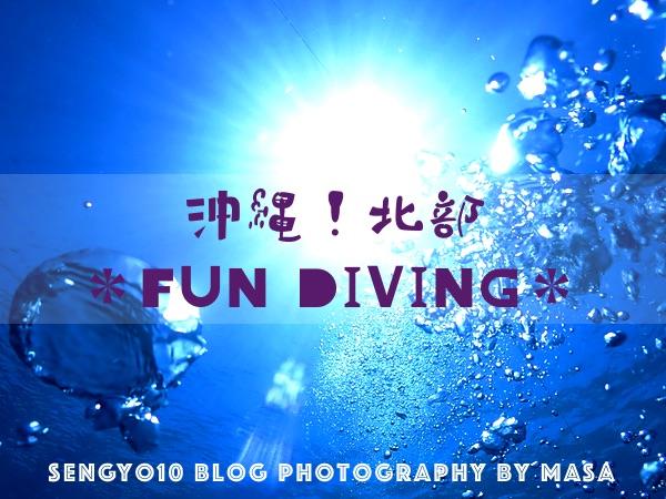 水納島・瀬底島!3ボートFUNダイビング