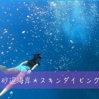 水中郵便ポストと記念撮影*砂辺海岸にてスキンダイビング!