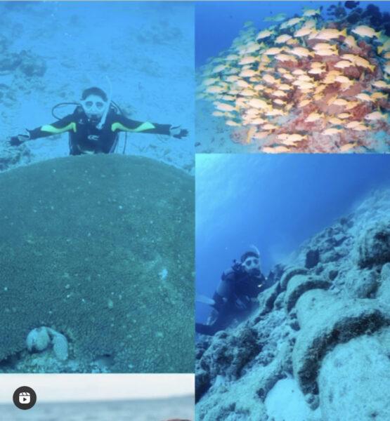 水納島ダイビング