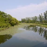 東京都内最大の水元公園がデカすぎ